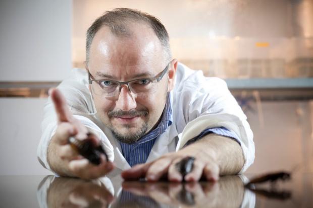 Twórca HiProMine: Owady są paszą ewolucji (wideo)