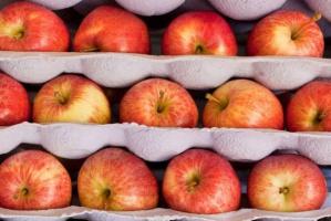 "Rusza kampania ""Europejskie Jabłka Dwukolorowe�"