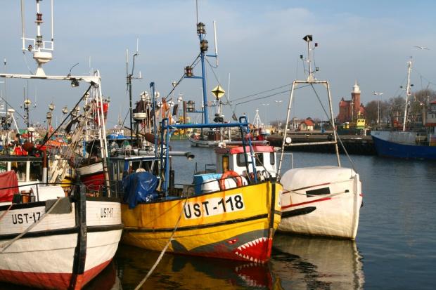 Parlament Europejski zatwierdził plan zarządzania zasobami ryb na Bałtyku