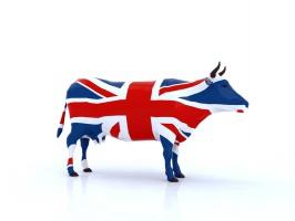 Jak Brexit wpłynie na przemysł mięsny w Wielkiej Brytanii?