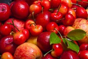 Polska największym producentem jabłek i wiśni w UE