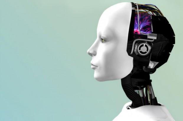Roboty mogą zastąpić w W.Brytanii zagranicznych pracowników