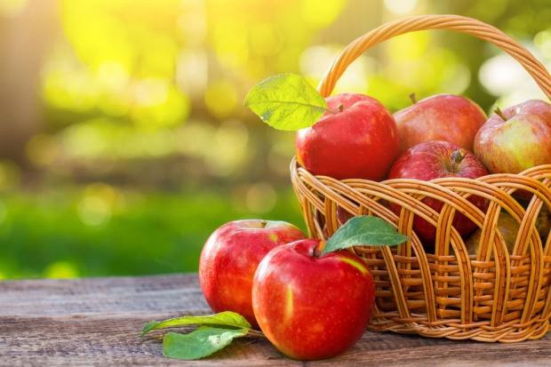 Dynamika sprzedaży jabłek w Polsce