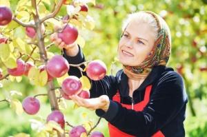 PIP kontroluje pracę Ukraińców