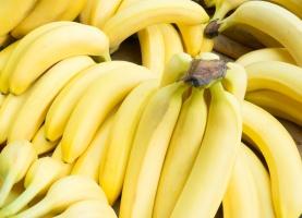 Wyniki kontroli pajęczego kokonu znalezionego na bananach w sklepach Lidl