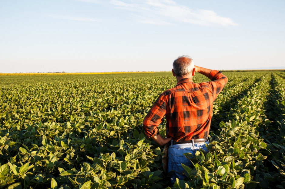GUS: Zarobki rolników praktycznie nie rosną