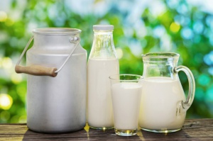Prognozy dla rynku mleka w latach 2016-2025