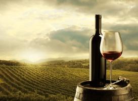 Zwiększa się polski rynek wina