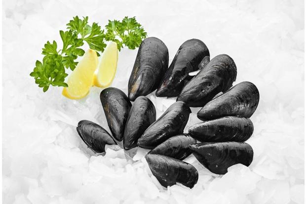Nowe gatunki owoców morza w ofercie MAKRO