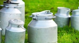 Zwiększa się skup mleka, a dzięki temu i produkcja przetworów mlecznych
