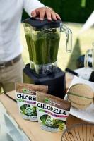 Purella Food: Chlorella to naturalny, zielony doping dla organizmu