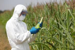 """""""PiS wprowadza GMO tylnymi drzwiami"""""""
