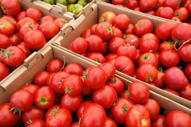 Spadła światowa produkcja pomidorów