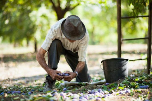 Prezydencka ustawa emerytalna: Spór o rolników