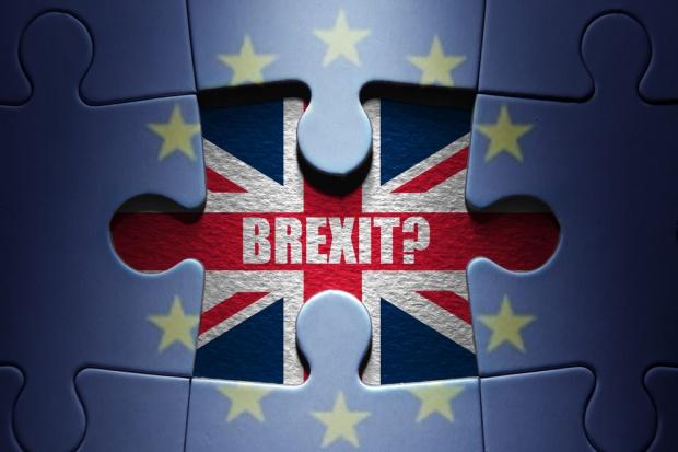 PiS: Brytyjczycy sprzeciwili się odejściu od wartości, na których powstawała UE