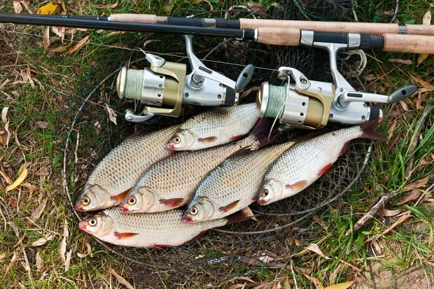 Sejm przyjął senackie poprawki do noweli dot. rozwoju sektora rybackiego