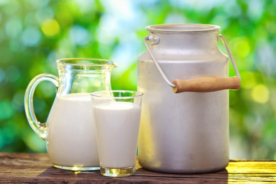 Wzrosły dostawy mleka i produkcja art. mleczarskich w Niemczech