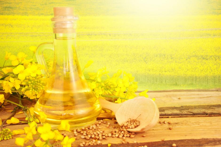 Olej rzepakowy wciąż popularny w polskich domach