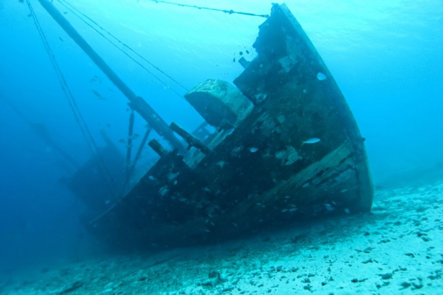 340-letni ser znaleziony we wraku okrętu na Bałtyku