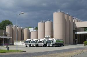 Rabobank przedstawił ranking 20 największych koncernów mleczarskich świata