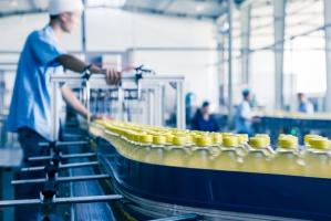 Wzrost zatrudnienia w sektorze przemysłowym, spadek w rolnictwie