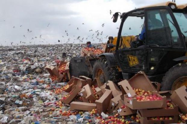Rosja zniszczyła aż 7,5 tys. ton żywności z UE