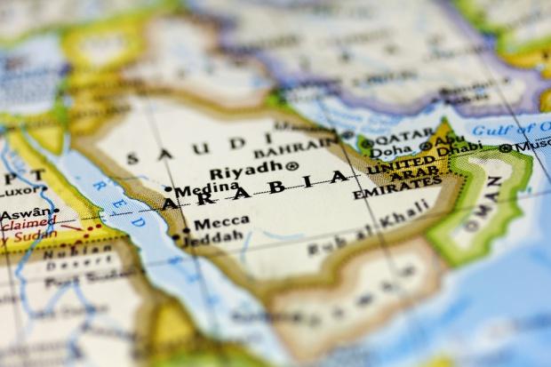 Zielone światło dla eksportu polskiej wołowiny do Arabii Saudyjskiej