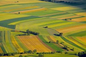 Przepisy o sprzedaży gruntów: obrót ziemią zamarł, a ceny spadły