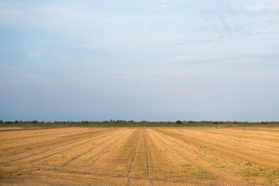 Bez przełomu na rynku obrotu ziemią rolną