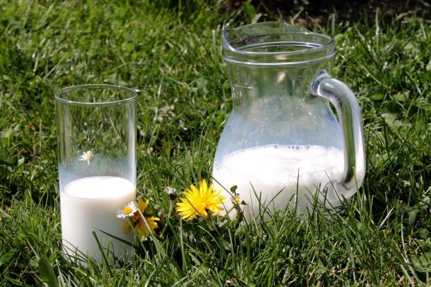 Wzrost średniej ceny mleka w lipcu - po raz pierwszy od wielu miesięcy
