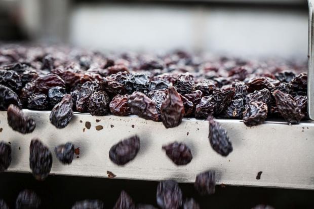 Rośnie popularność suszonych śliwek kalifornijskich w Polsce