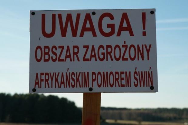Kolejne zmiany dotyczące stref ASF w Polsce