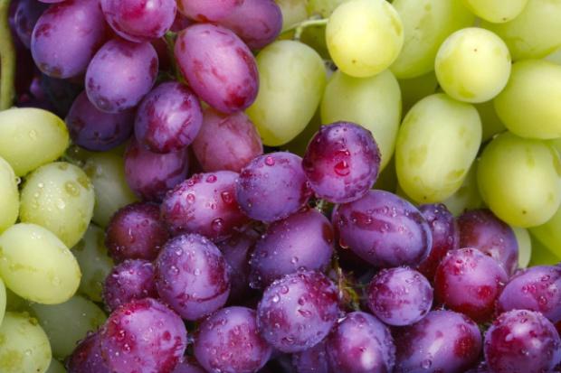 Winogrona zmniejszają ryzyko nowotworów