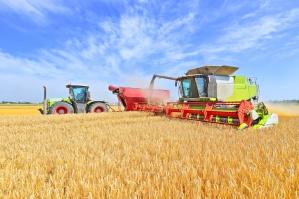 Złe perspektywy cenowe dla hiszpańskich rolników