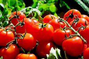 Ukraina eksportuje coraz więcej pomidorów do Unii Europejskiej