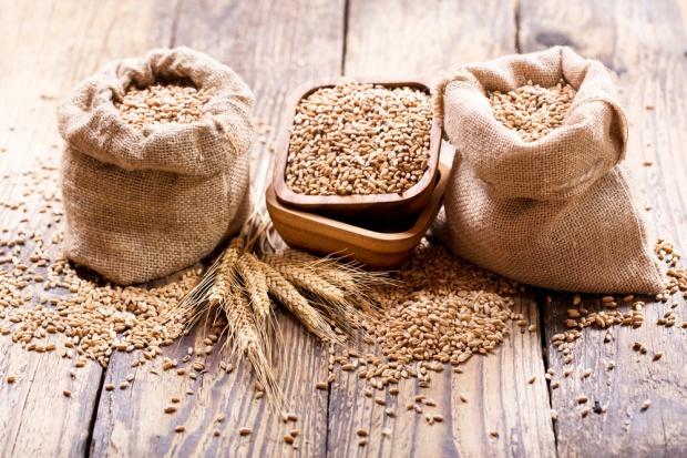 Produkcja zbóż w RUK