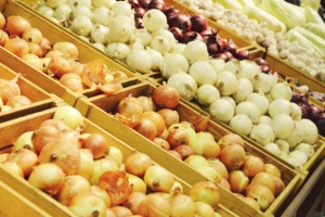 Rosja: Duży spadek importu cebuli
