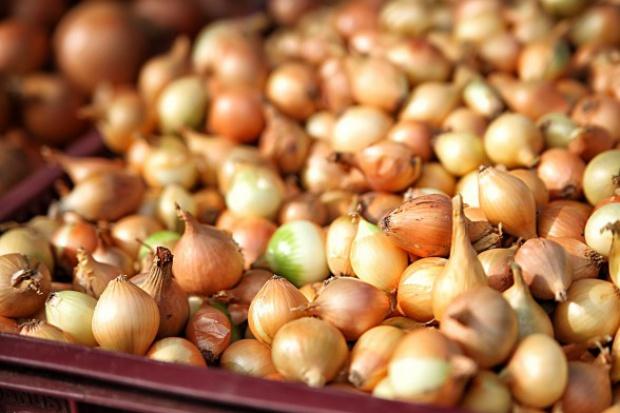 Indie wyeksportowały 870 tys. ton cebuli