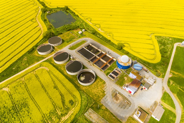 KNRB: Projekt nowelizacji ustawy biopaliwowej to zamach na rolnictwo