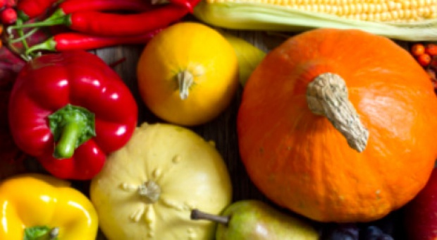 Lista 270+80 firm z branży przetwórstwa owocowo-warzywnego (nowa edycja)