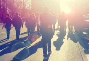 Lubelskie: Protest rolników ws. ASF na drodze krajowej nr 2