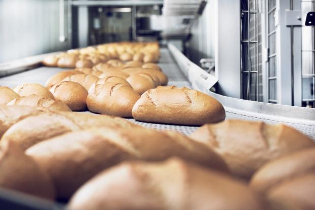 Nowel Piekarnia Nowakowski z największą linią do produkcji chleba w Polsce
