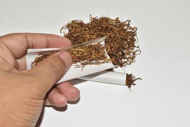 Tabak Grupa inwestuje w fabrykę wyrobów tytoniowych