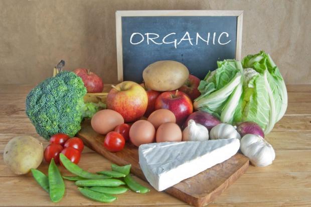 OFZ: Obiecujące perspektywy wzrostu rynku żywności ekologicznej w Polsce