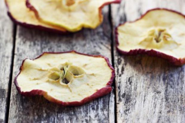 Spółka Stoczek Natura jednak nie zainwestuje w produkcję suszu z owoców i warzyw