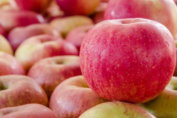 Jurgielreklamuje polskie jabłka w chińskiej telewizji