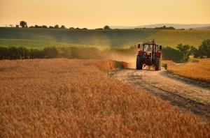UE chce więcej plonów z Ukrainy. Polscy rolnicy zaniepokojeni