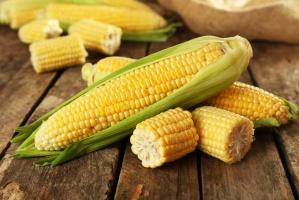 Polacy wciąż jedzą za mało kukurydzy