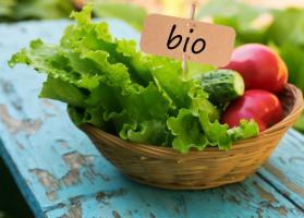 Ponad 11 mln hektarów ziemi rolnej w UE to uprawy ekologicznie