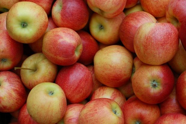 Spodziewany nieznaczny wzrost eksportu jabłek z UE w sezonie 2016/17